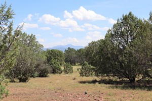 HIGHLY DESIRED AREA IN JUNIPERWOOD RANCH