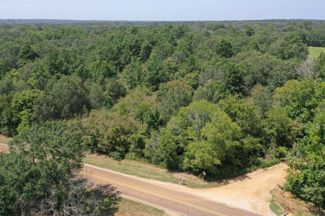 RURAL ACREAGE FOR SALE IN EAST TX | GRAPELAND REAL ESTATE