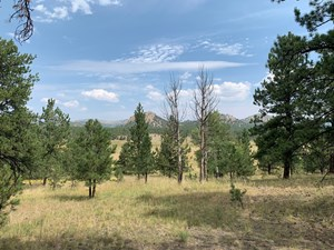 GORGEOUS 5.1 ACRE LOT FOR SALE IN COLORADO!