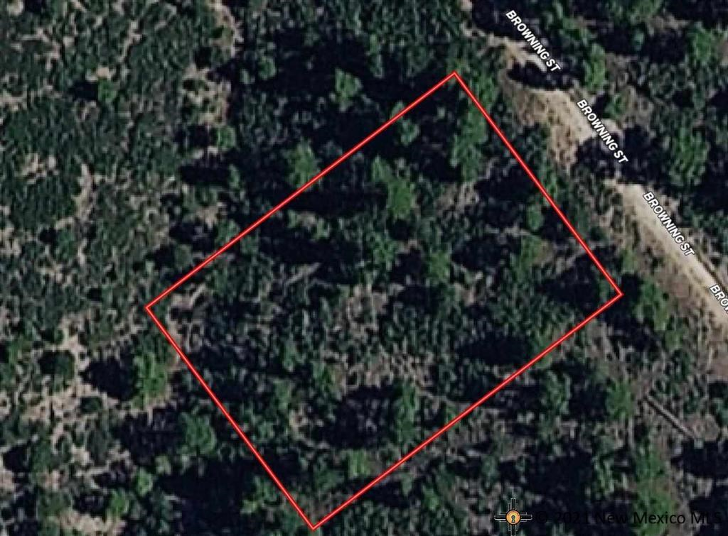 TIMBERON LAND FOR SALE IN NEW MEXICO