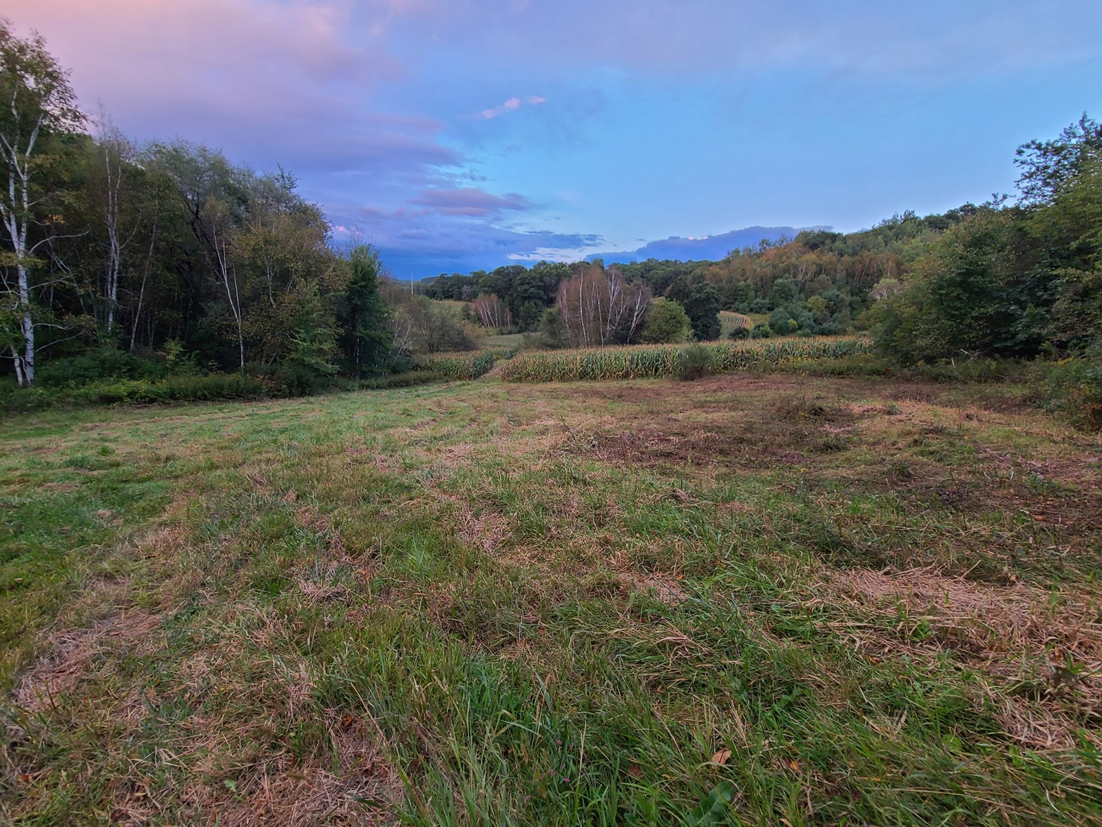 Premier Turn-Key Hunting Compound in Monroe County, WI