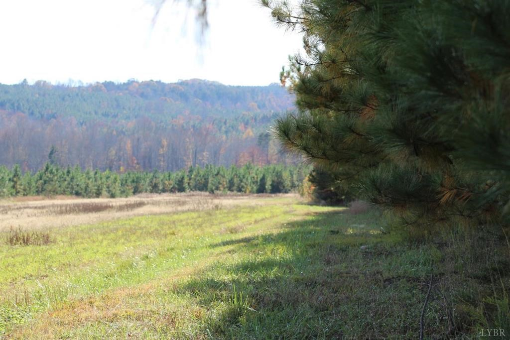 131+/- acres in Vernon Hill, VA