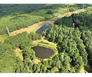 105 Acres Hunting Timber Land For Sale in Amite County, MS