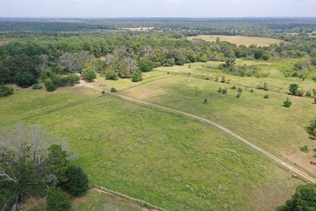 COUNTRY HOME AND ACREAGE FOR SALE PALESTINE TX | INVESTMENT