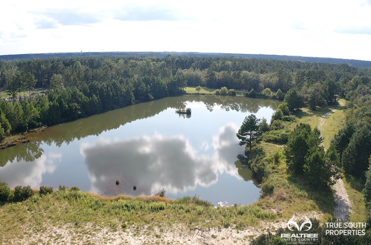 Ridgeland Jasper Hunting & Private Homesite Land w/ Ponds