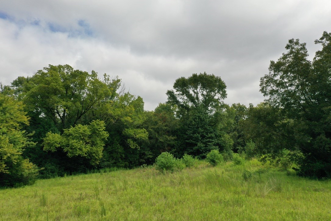 COMMERCIAL LAND 10 ACRSE IN PALESTINE TX