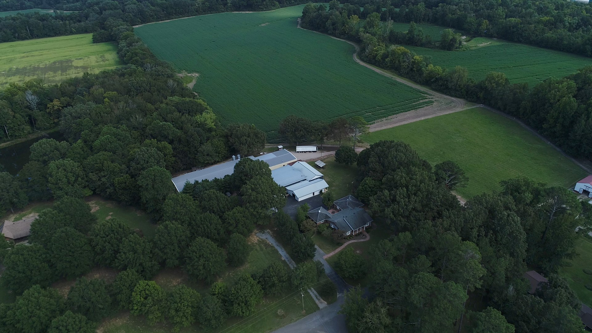 Mini Farm for sale in Savannah, TN Lots of Extras, Big Creek