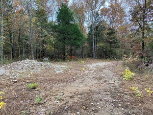HUNTING LAND FOR SALE IN NORTH ARKANSAS 54 ACRES +/- WOODS