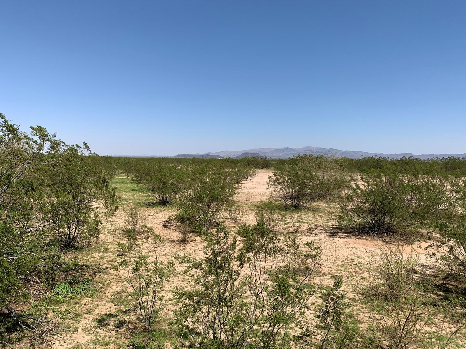 64 Acres Arizona Desert Property, Salome, AZ La Paz County