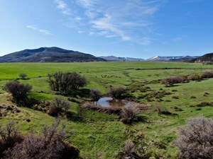 MOUNTAIN GRAZING AND HAY GROUND LAND FOR SALE COLLBRAN CO