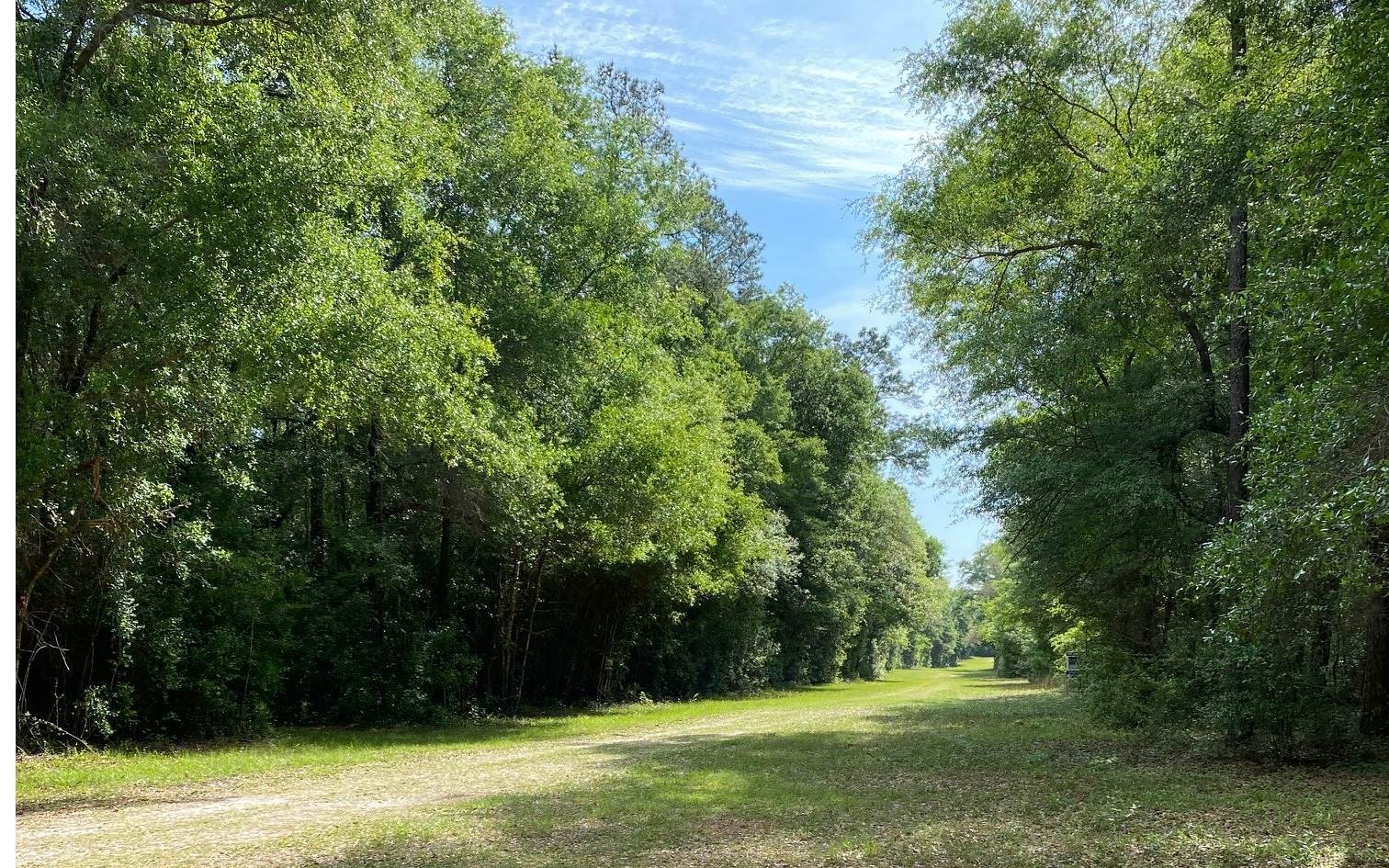RIVER SUBDIVISION 3.95 AC LOT FOR ONLY $50,000.00