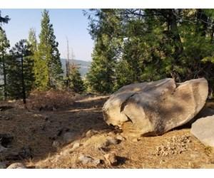 Remote Rural Experience/Northern, CA/Wildlife/Views