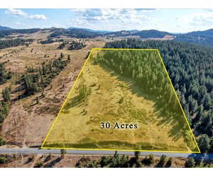 Mixture of Timber and Pasture 6 mi from Chewelah with Views!