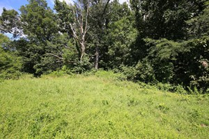SOUTHEASTERN ILLINOIS RECREATIONAL LAND FOR SALE AT AUCTION