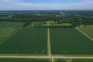 ILLINOIS FARM LAND FOR SALE AT AUCTION