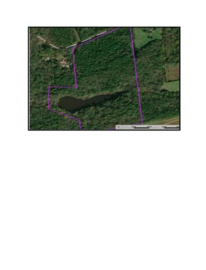 29 ACRES TIMBER, MEADOWS & POND IN WOODRUFF, SOUTH CAROLINA