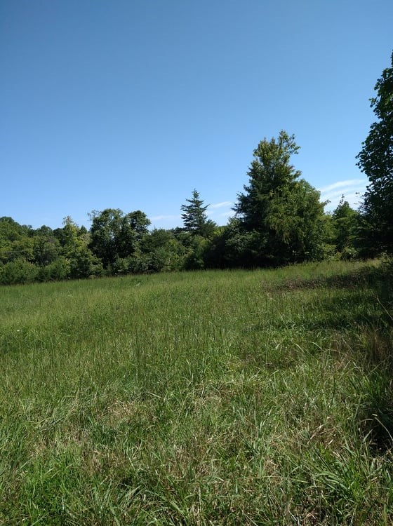 54+/- Acres Near Country/ Golf Club in Franklin Co., VA