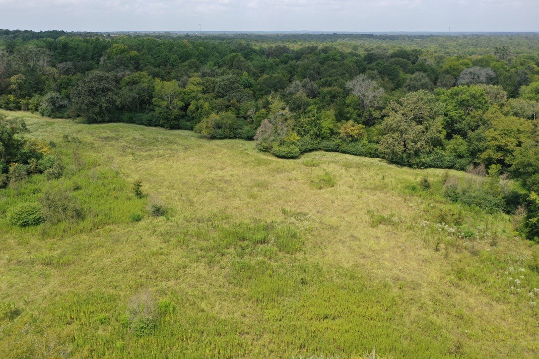 ACREAGE FOR SALE IN PALESTINE | EAST TX