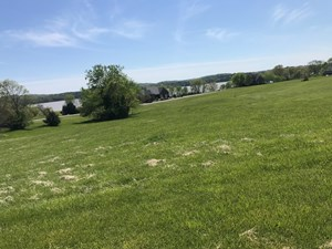 CLEARED LOT FOR SALE ONLINE AUCTION HAWKINS COUNTY TN