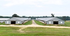 POULTRY/CATTLE FARM AND 100 ACRES FOR SALE IN MISSISSIPPI