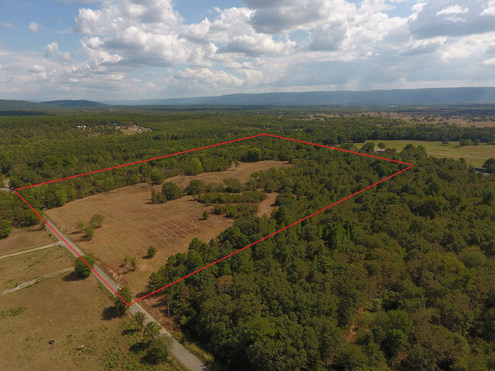 30 Acres - Cabin Site - Creek Frontage – National Forest