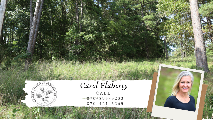 Lot Near White River For Sale in Mountain Home, AR