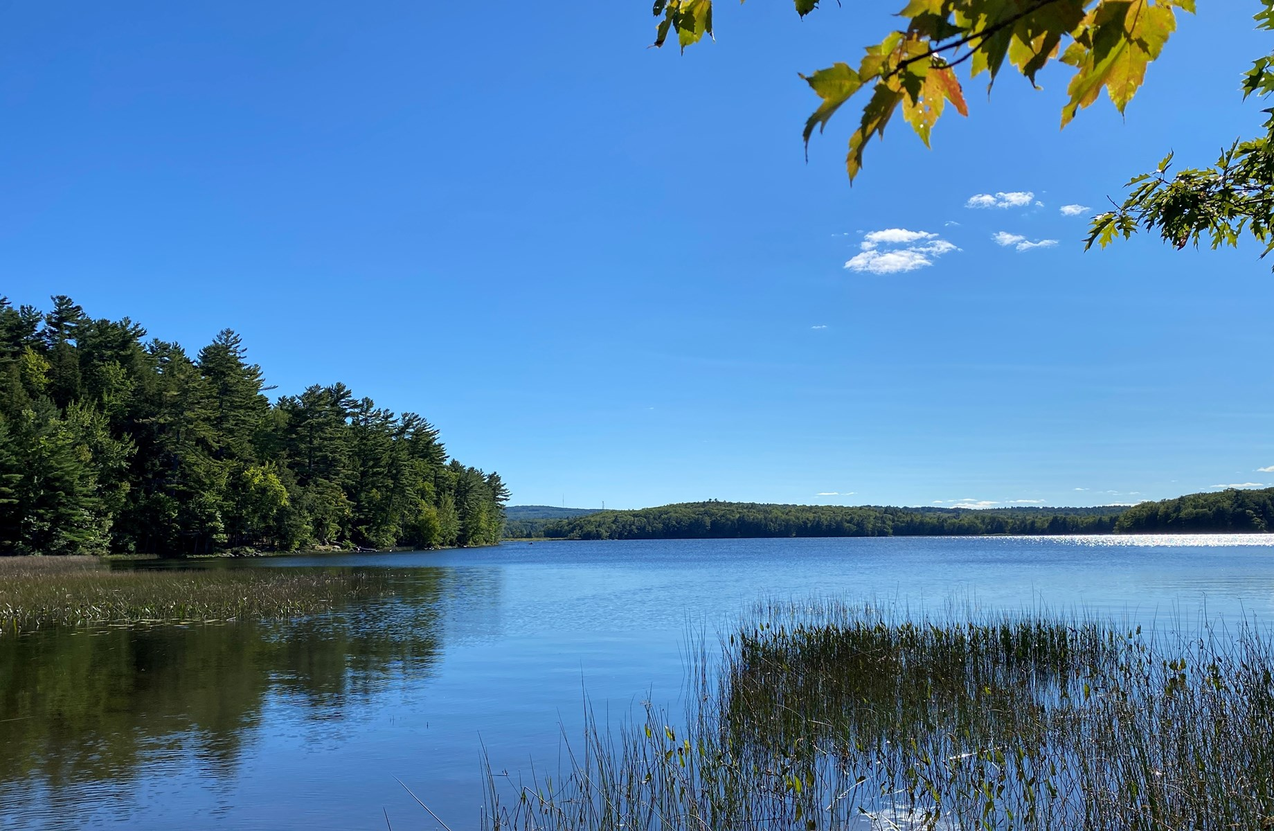 Land for sale in Holden, Maine
