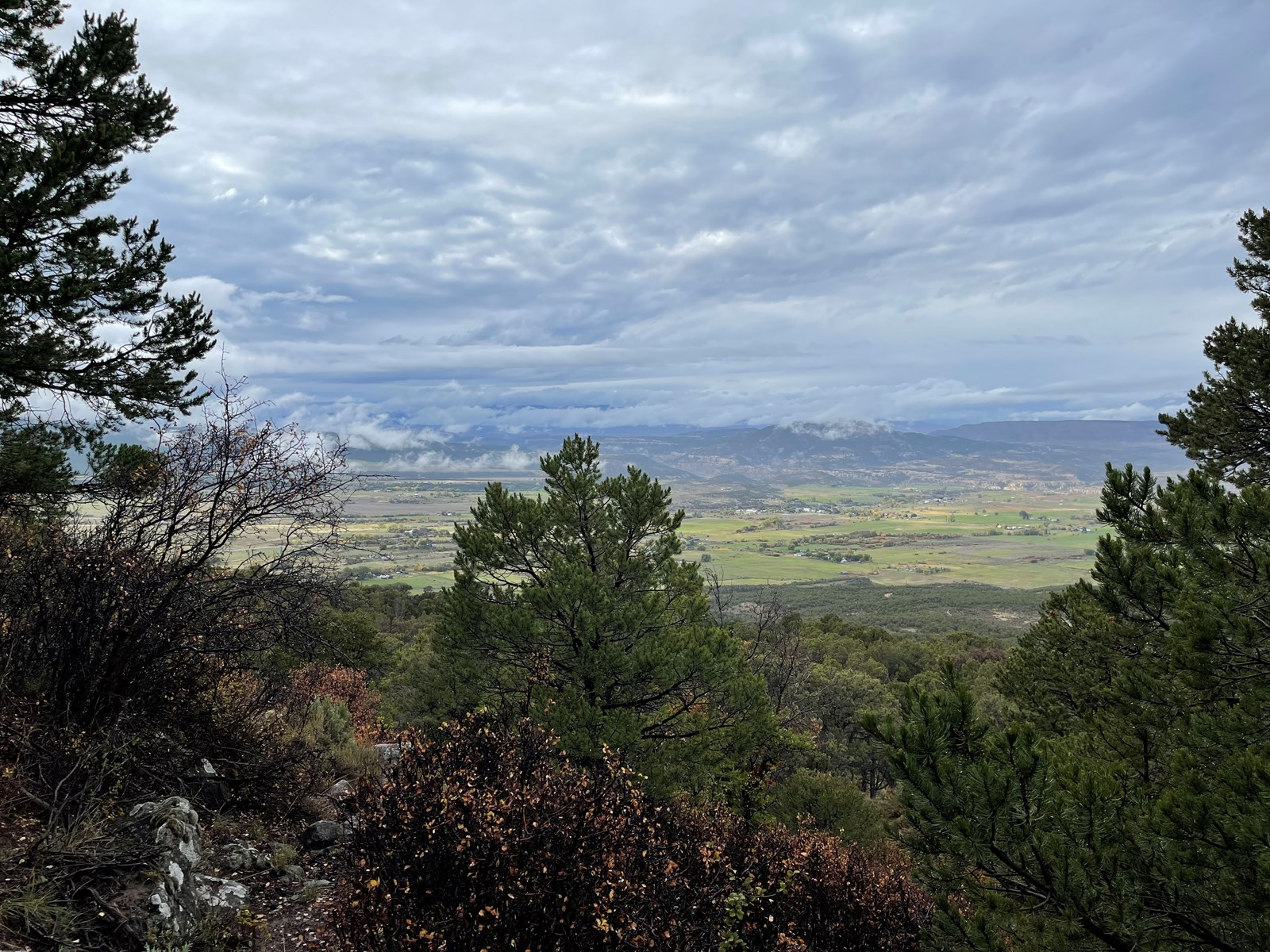 Hunting Property Borders Public Land For Sale In Colorado
