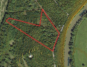 18 TIMBERED ACRES FOR SALE NEAR BOWLING GREEN, KY.