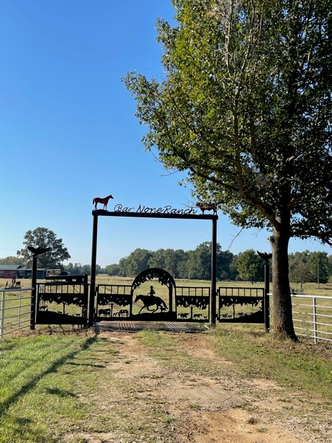 Horse and Cattle Ranch For Sale in Morris County, Texas!
