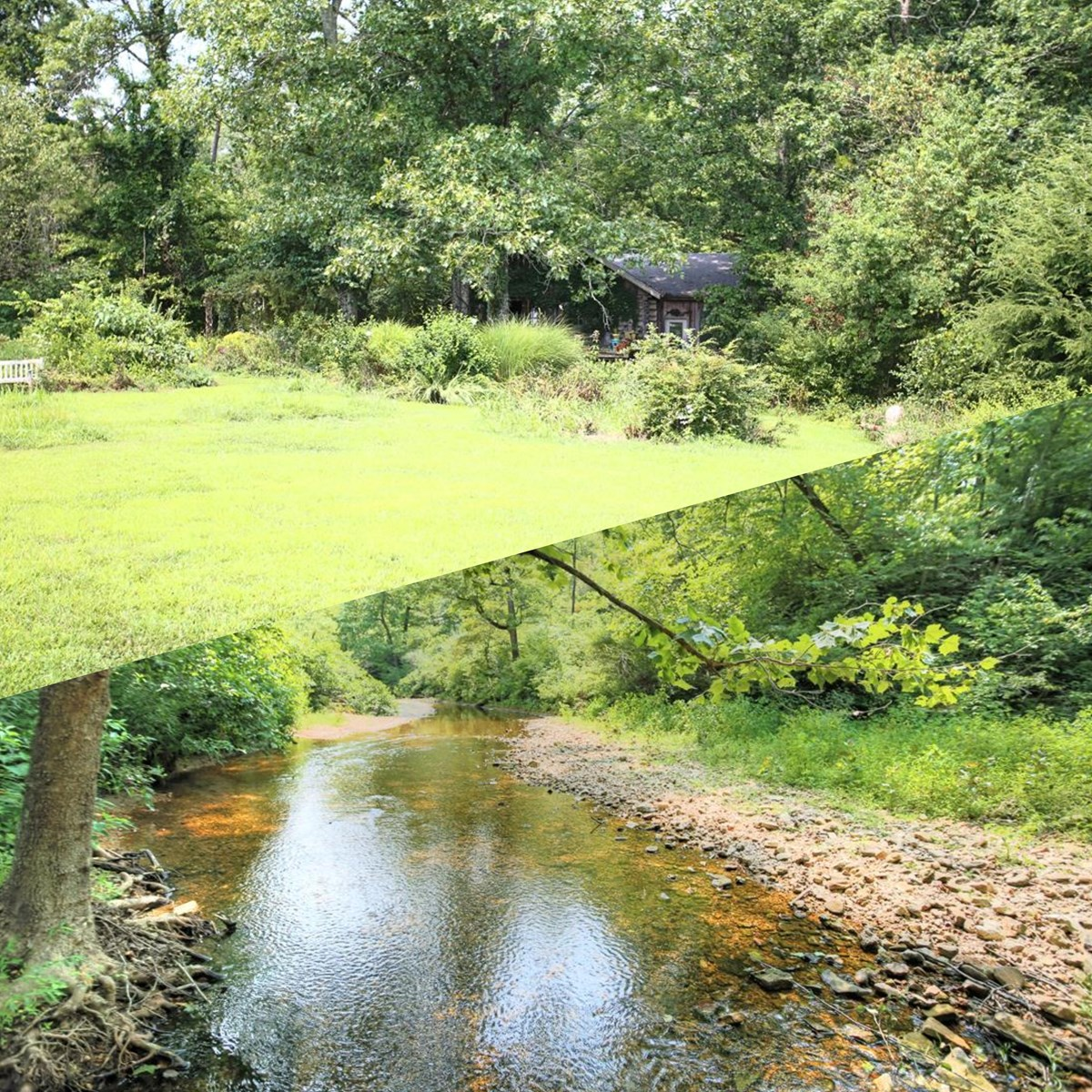 Farm & Hunting Land For Sale, Live Water in Howell Co, MO