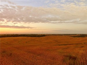GREAT FARM WITH HUNTING & RECREATION - DEKALB COUNTY, MO