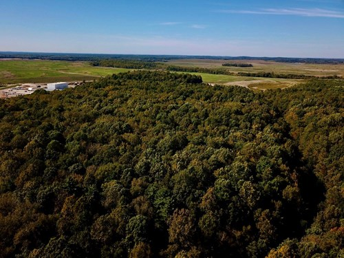 Warrick County Hunting, Recreation Land for Sale With Timber