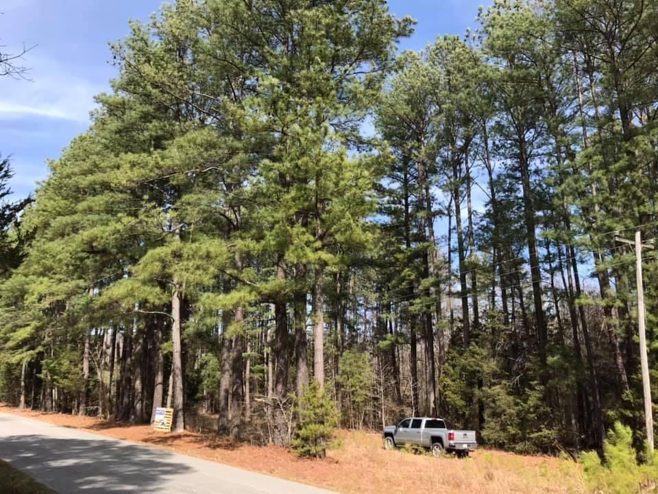 Wooded Acreage In Southern VA