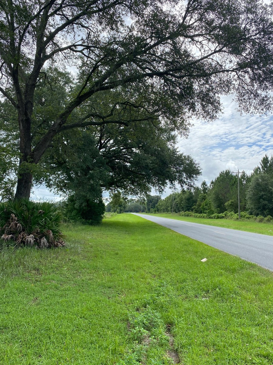 10.01 ACRES WITHIN 1 MILE OF MAYO FOR ONLY $70,000!!!!