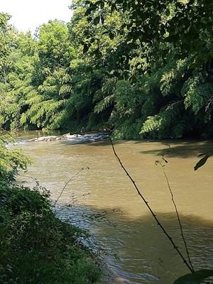 114+/- ACRE RIVER FRONT PROPERTY IN PITTSYLVANIA CO., VA