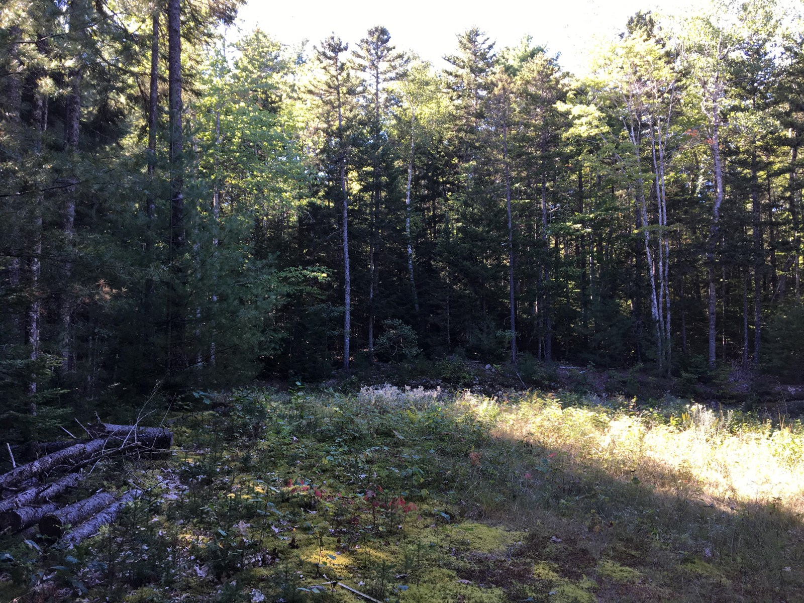 Subdivision Lot for sale in Northfield, Maine