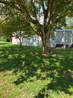 2 BR, 1 BA MOBILE HOME IN BEAN STATION, TN FOR SALE