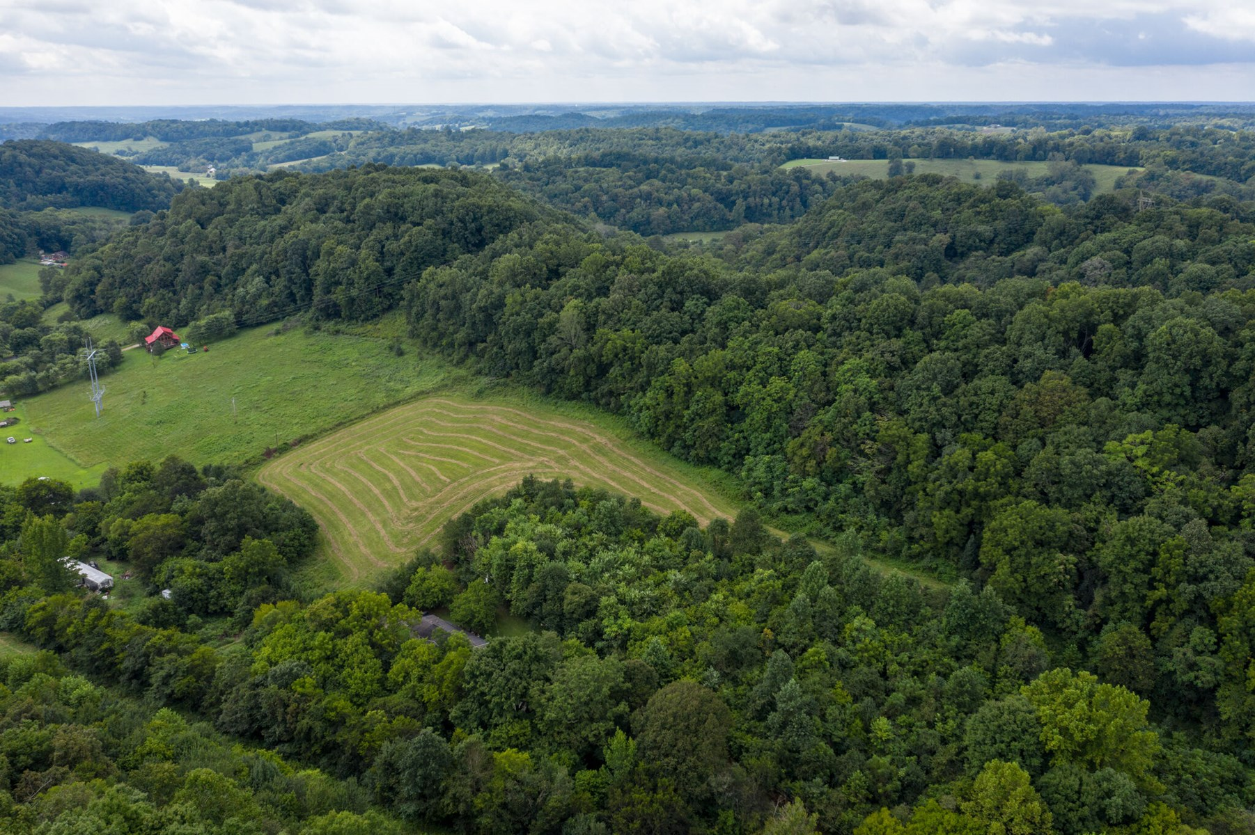 Acreage with Road Frontage for Sale in Lynnville, Tennessee