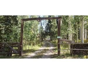Log Cabin Colorado Ridgway Telluride Mountains