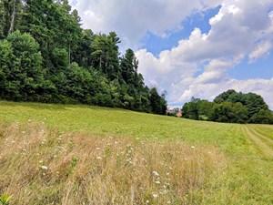 LAND FOR SALE IN COPPER HILL VA! VIRGINIA REAL ESTATE