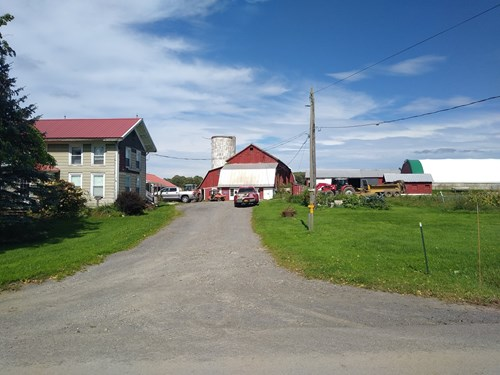 ORGANIC CERTIFIED DAIRY FARM FOR SALE, AUCTION, NEW YORK