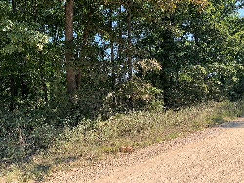 11+/- Wooded Acres for sale Morgan County Missouri