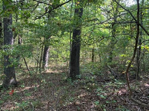 20+/- Wooded Acres Highway 5 Versailles Missouri