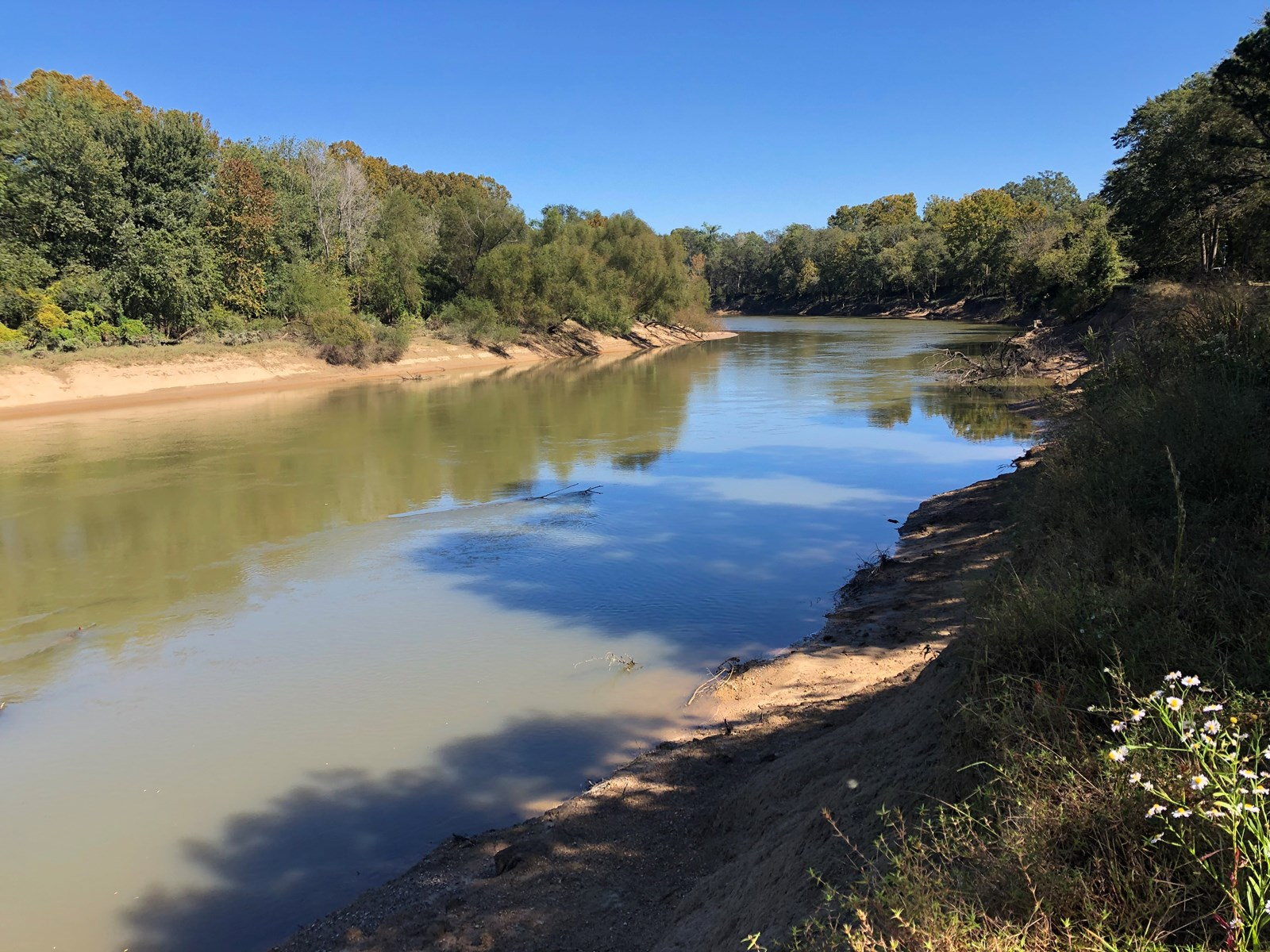 Recreational Land for Sale on Ouachita River near Camden, AR