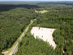 156 ACRES LAND FOR SALE IN PEARL RIVER COUNTY, MS