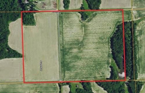 55 Acres Farmland For Sale at Auction
