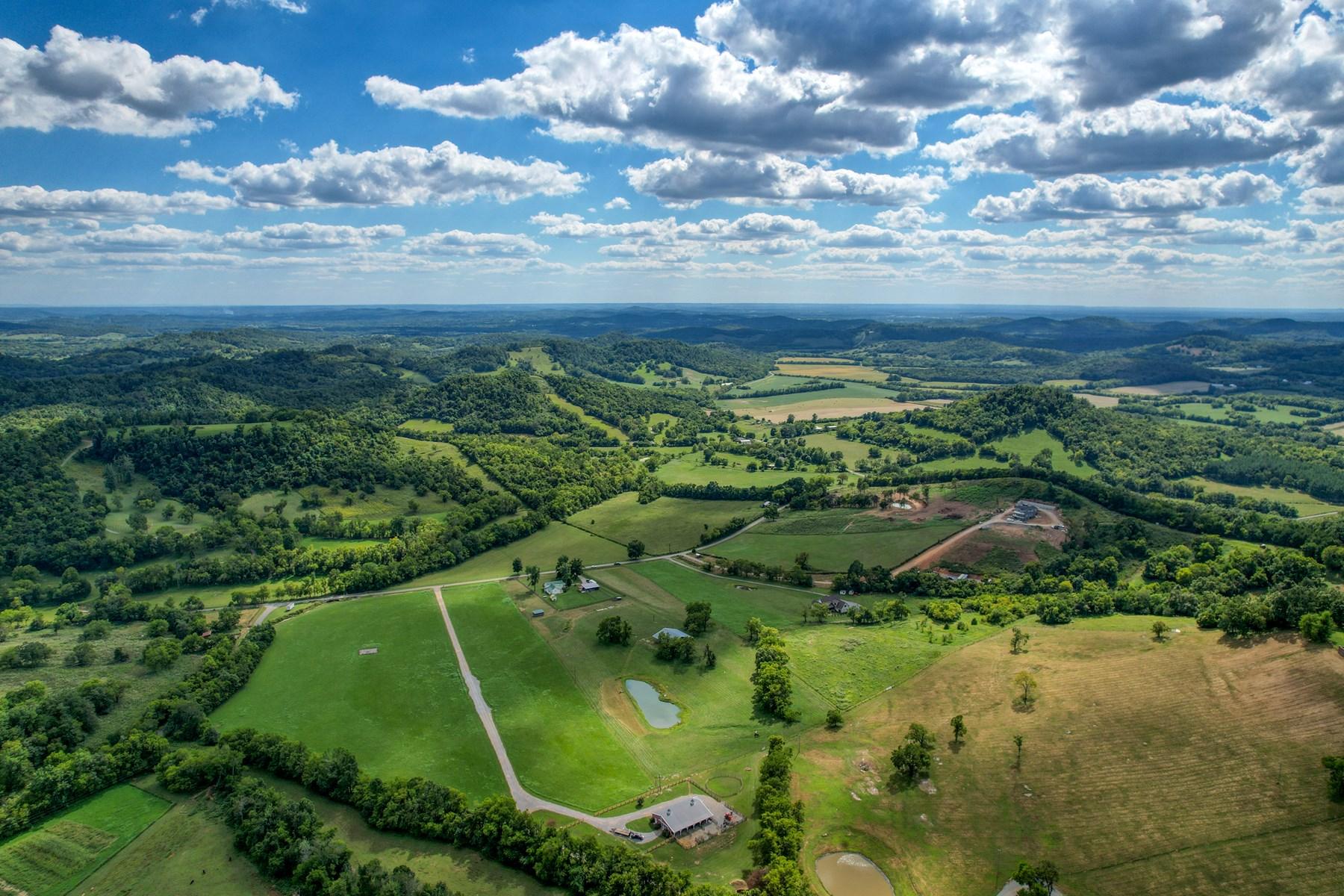 Horse farm in Bell Buckle, TN!