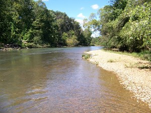 OFFGRID LAND WITH CREEK, CABIN, FISHING, BUG OUT PROPERTY