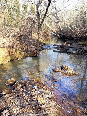 A PARADISE FOR HUNTERS IN SOUTHERN VA
